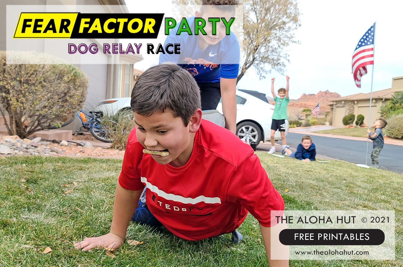 Fear Factor Party Dog Relay Race - The Aloha Hut