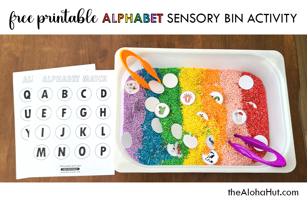 Alphabet Sensory Bin Activity - free printable 4 by the Aloha Hut