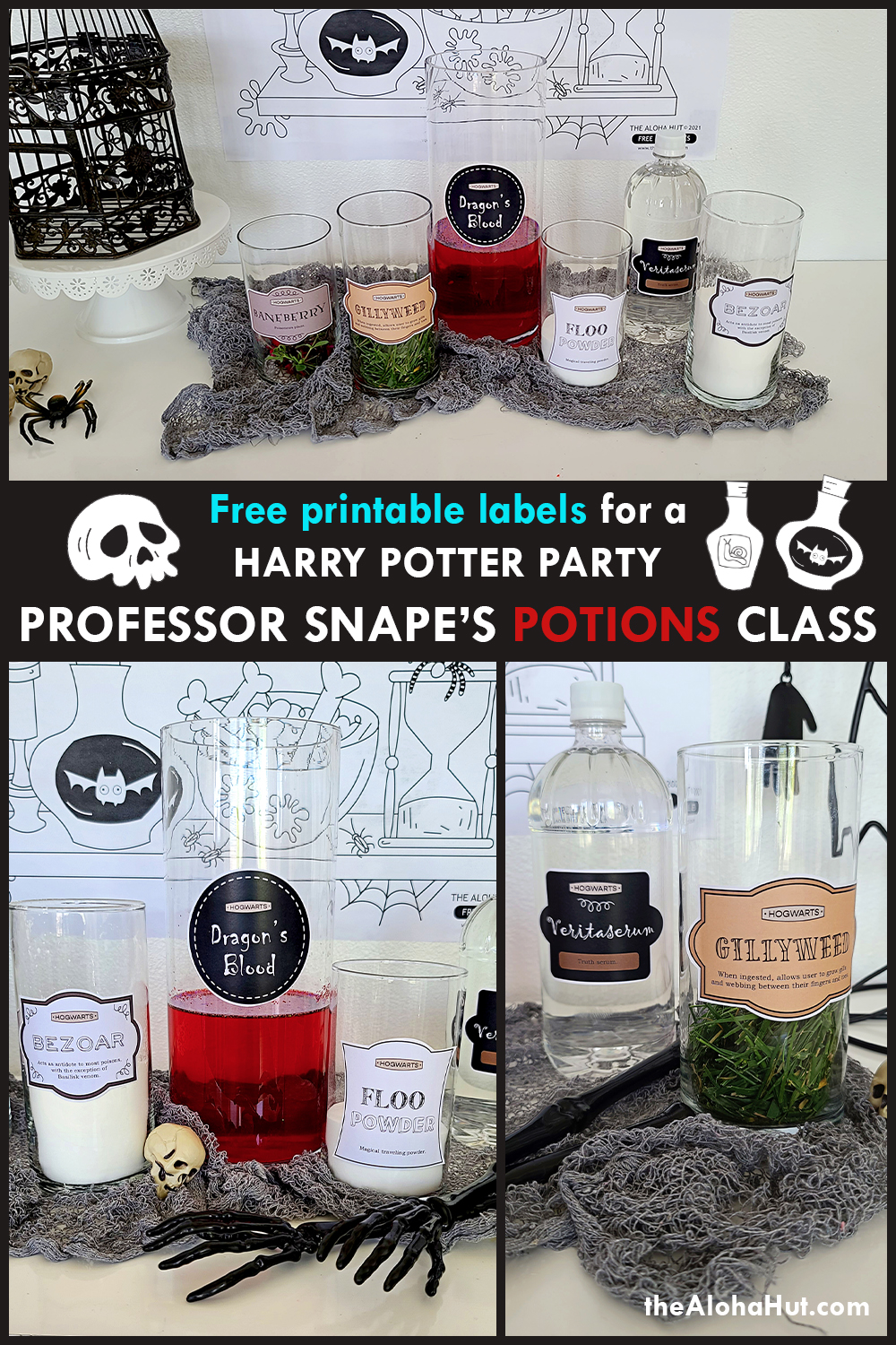 Harry Potter Party Potions Class by the Aloha Hut